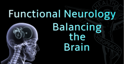 Functional Neurology - Balancing the Brain CE Course